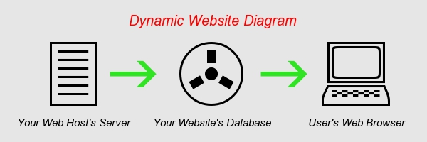 how a dynamic website works